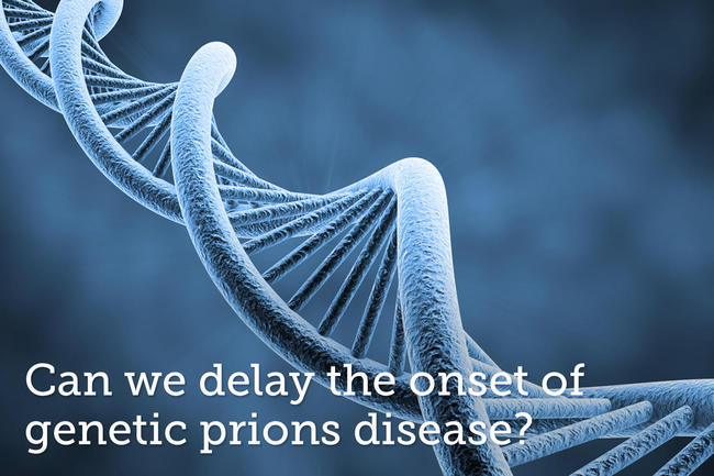 <br><a target='_blank' href='https://experiment.com/projects/can-anle138b-delay-the-onset-of-genetic-prion-disease?s=search'>https://experiment.com/projects/can-anle138b-delay-the-onset-of-genetic-prion-disease?s=search</a>
