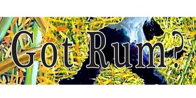 Large_cropped_gotrummainbanner_withcovers_fullsize